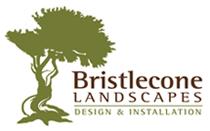 Bristlecone Landscapes
