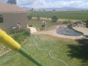 Hydro-Seeding around patio