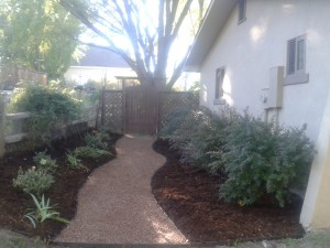 Trail Mix Path to backyard entry way
