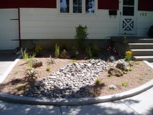 Small Xeric Garden