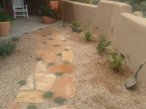 Flagstone and Thyme Pathway